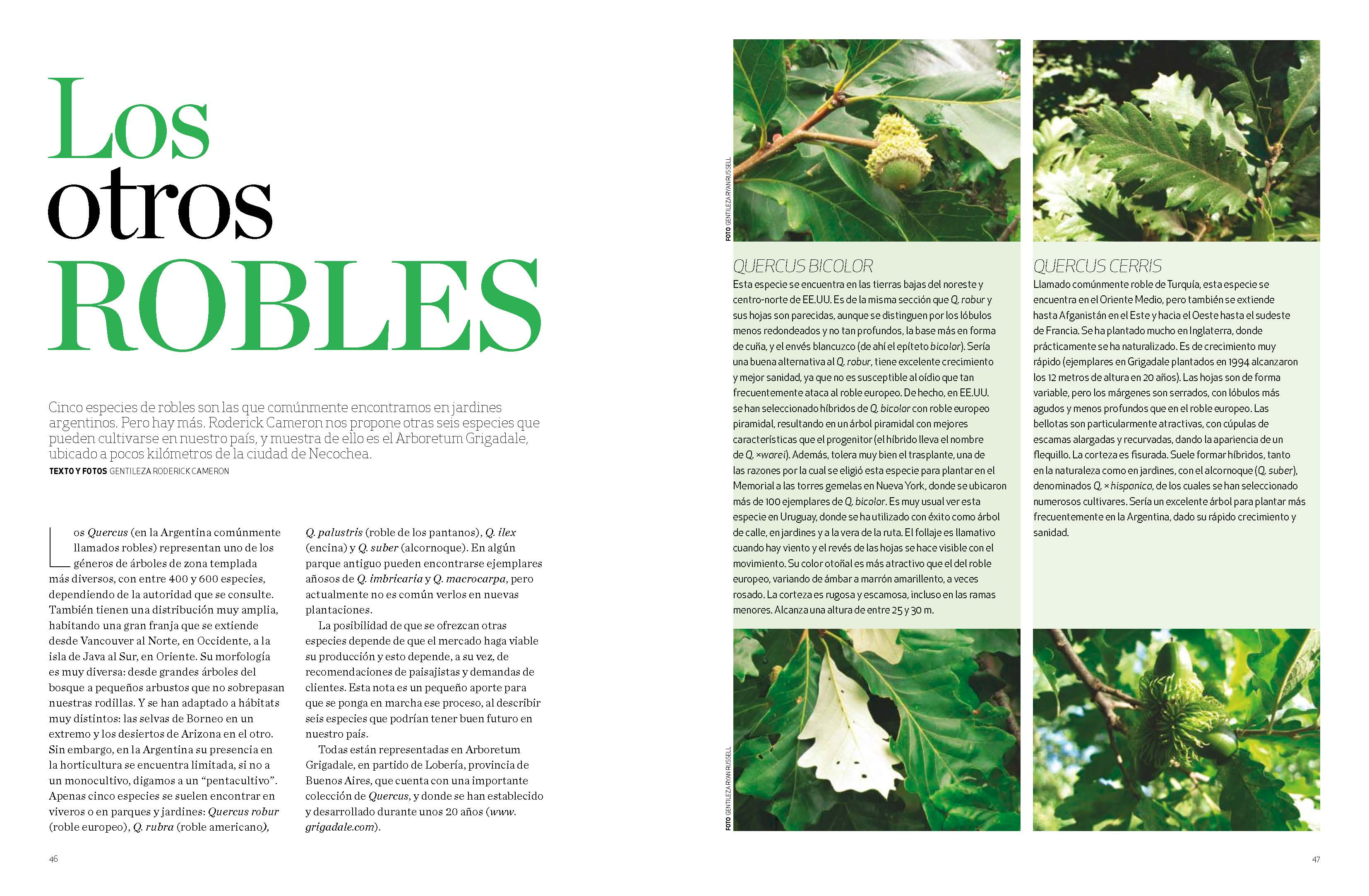 Blog grigadale for Revista jardin 2016